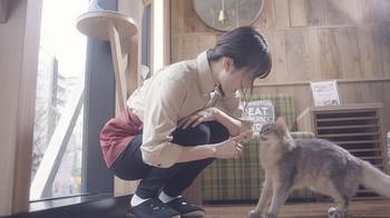 猫カフェ12月1日.jpg