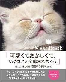 Mash Book.jpg